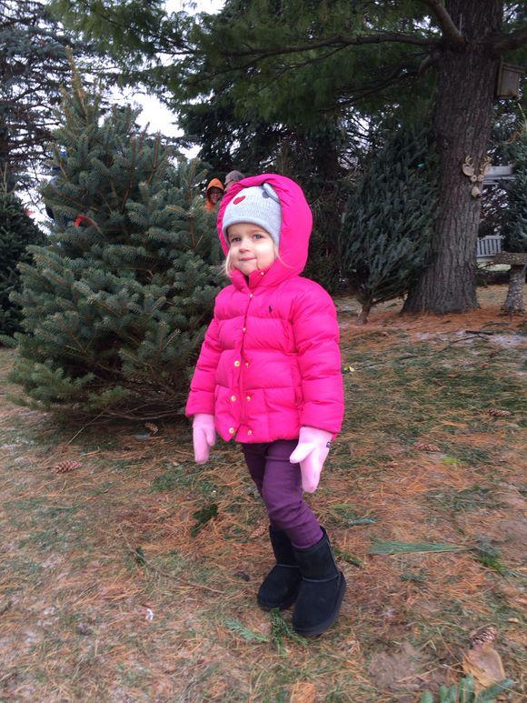 At the Tree Farm